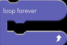 5 loop forever