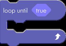 5 loop until